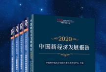 2020信息化蓝皮书合集「pdf-epub-mobi-txt-azw3」