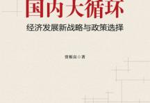 国内大循环:经济发展新战略与政策选择「pdf-epub-mobi-txt-azw3」