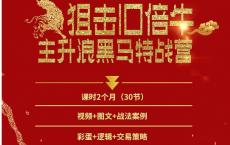 《主升浪黑马特战营》「pdf-epub-mobi-txt-azw3」