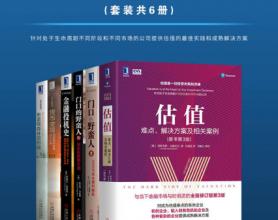 金融并购经典(套装共6册)「pdf-epub-mobi-txt-azw3」