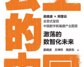 云上的中国:激荡的数智化未来「pdf-epub-mobi-txt-azw3」