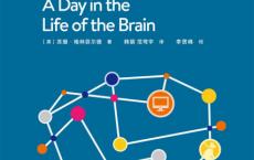 大脑的一天·鹈鹕丛书「pdf-epub-mobi-txt-azw3」