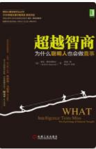 超越智商:为什么聪明人也会做蠢事「pdf-epub-mobi-txt-azw3」